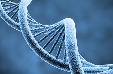 Terapia génica, la técnica que revoluciona la medicina