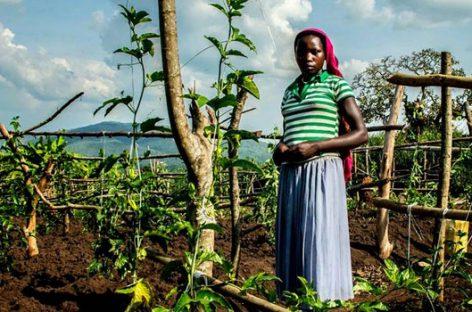 Empresarios que cambian la realidad en África