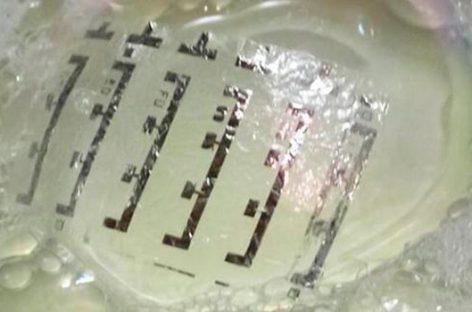 """Piel electrónica podría darnos un """"sexto sentido magnético"""""""