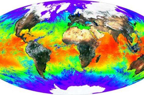 Propuesta de WWF en las negociaciones del clima de la ONU