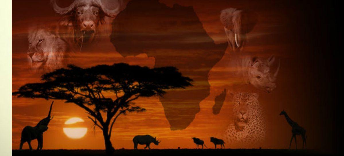 El macro mapa de la infinita riqueza de África
