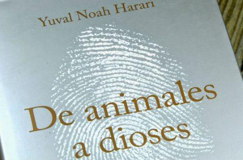 La historia de la humanidad. De animales a dioses
