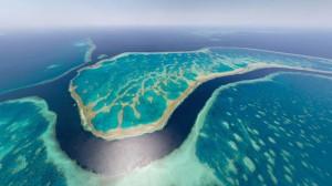 Gran barrera coral australia