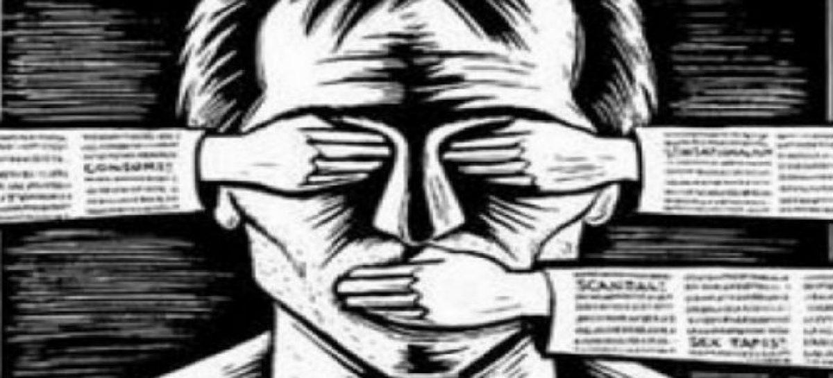 Ley Mordaza española, catedráticos en Derecho Penal en contra