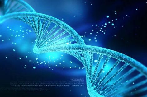 Obtener análisis de ADN desde el iPhone