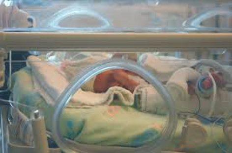 Diseñan un algoritmo que estabiliza la temperatura de los bebés en la incubadora