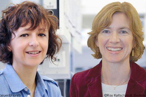 Las pioneras de la edición genética galardonadas con el Princesa de Asturias de Investigación