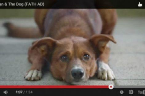 Donación de órganos, un vídeo para mover conciencias