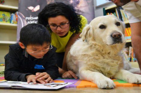 Perros que ayudan a los niños en la lectura