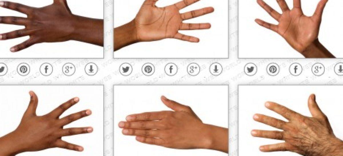 Campaña por la tolerancia racial en Google