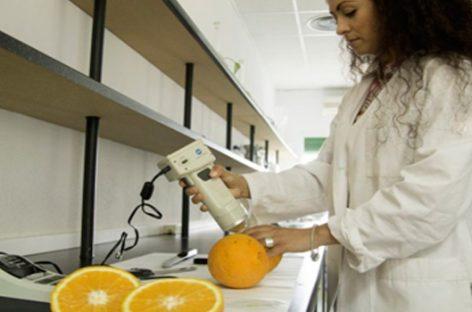 Innovaciones para lograr cultivos extra eficientes