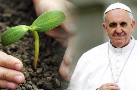 El Papa Francisco I afirma que la protección del medioambiente se ha convertido «en un imperativo moral»