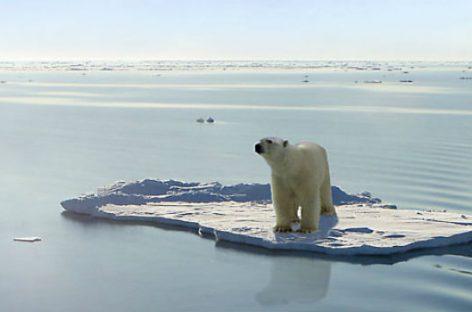 Científicos unidos contra el cambio climático