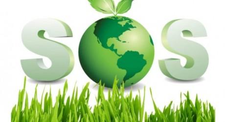 Para salvar el planeta el Vaticano se alía con ecologistas no católicos