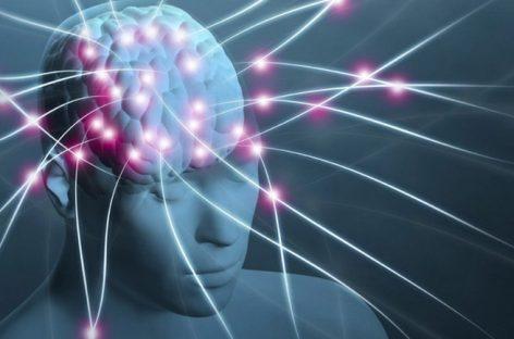 Hallazgo científico podría dar respuestas para afecciones como el autismo, la esclerosis múltiple y el Alzheimer