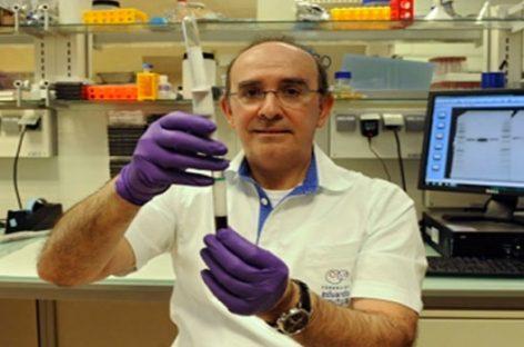 La innovación en terapias regenerativas cada vez más cerca