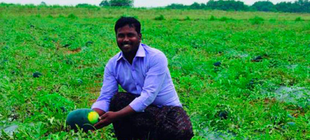FVF. Programa de campos fértiles para acabar con la sequía