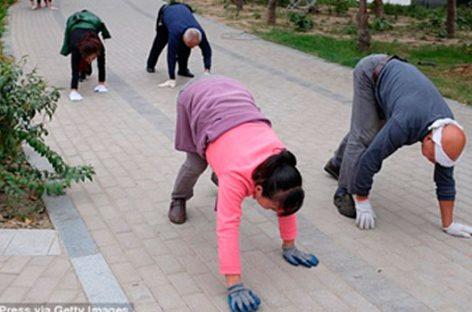 El paso del oso, nueva técnica en China con valor terapéutico
