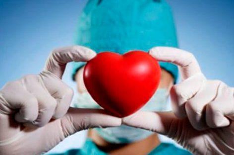 España, referencia mundial en donación de órganos
