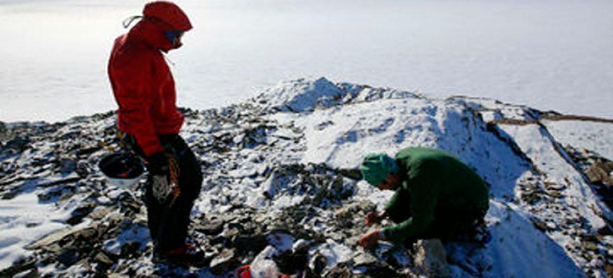 Nanopartículas de la Antártida para luchar contra el cáncer