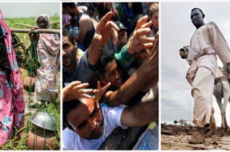 ONGs y los grandes desafíos humanitarios en 2016