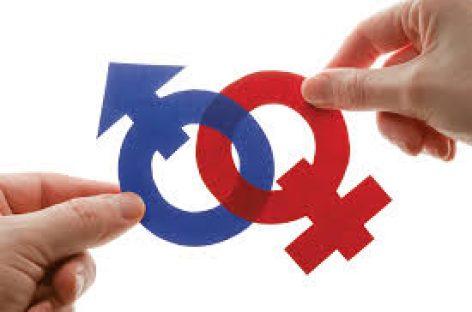 La Eurocámara insta al cumplimiento de la nueva estrategia de igualdad de género