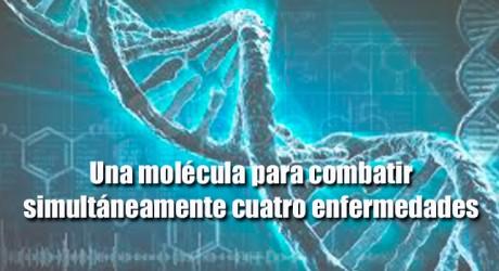 Una molécula para combatir simultáneamente cuatro enfermedades