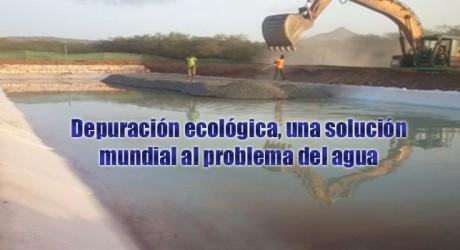 Depuración ecológica, una solución mundial al problema del agua