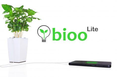 Cargar el móvil a través de una planta