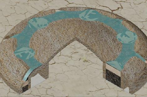 Crecimiento de plantas en suelos degradados