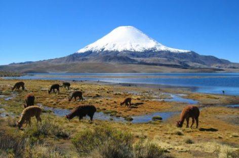"""La """"histórica"""" donación de tierras a Chile"""