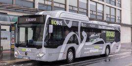 Biogás, la nueva alternativa contra el cambio climático