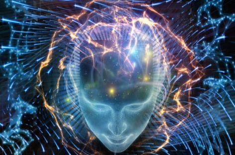 Neuralink: el nuevo proyecto para conectar el cerebro al ordenador