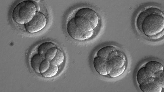 Científicos logran por primera vez corregir una grave enfermedad hereditaria