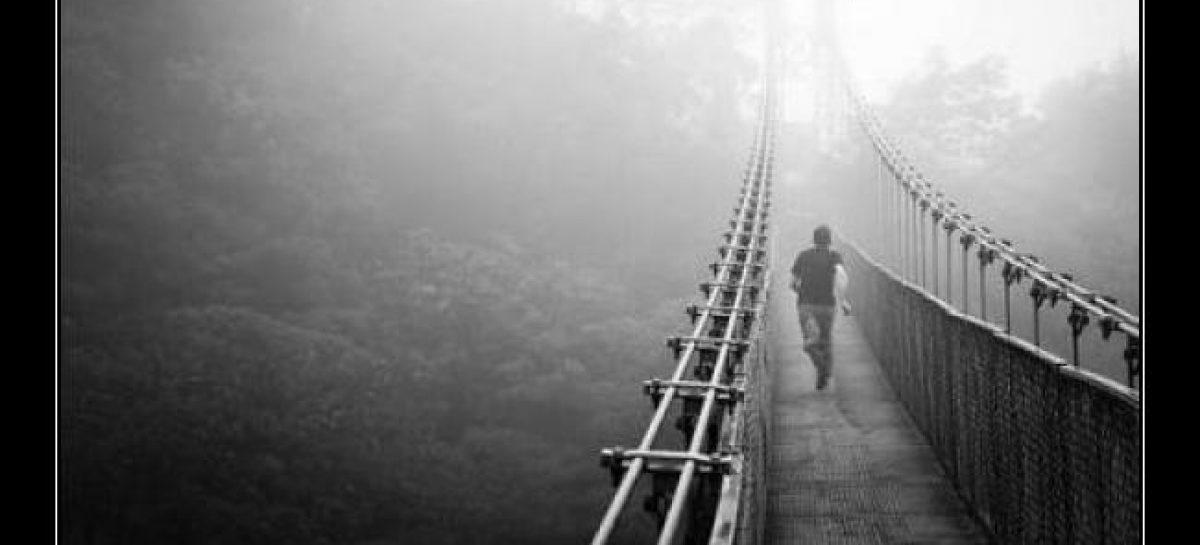 Luz y niebla. Jorge Dobner