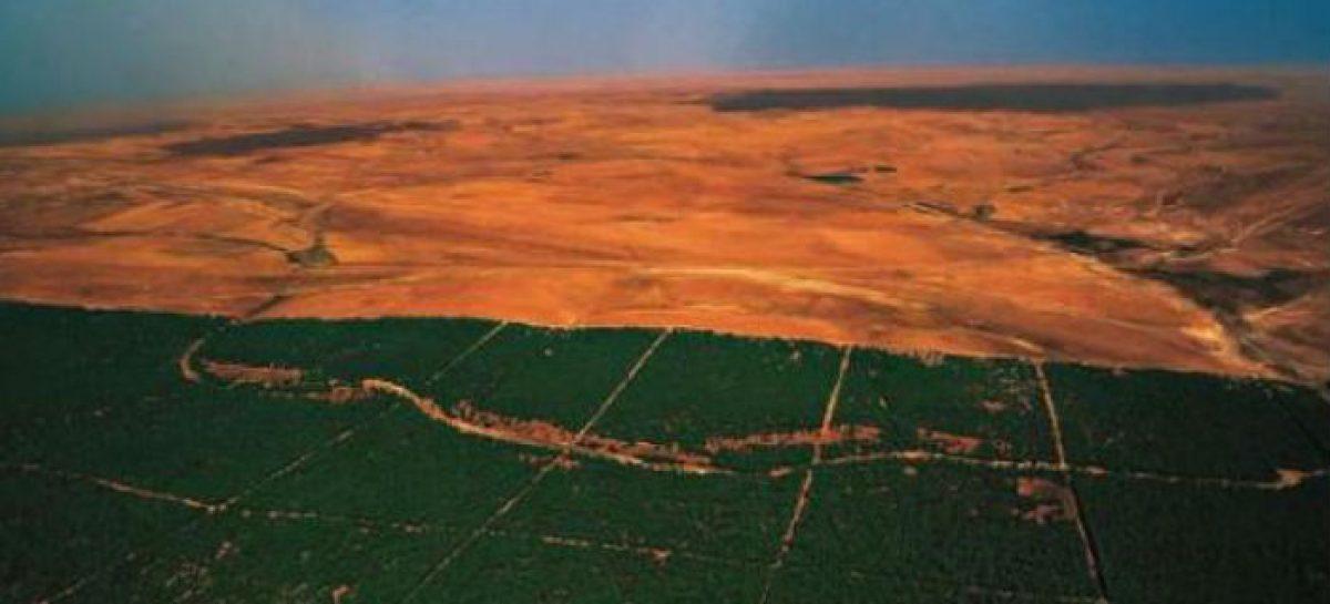 La Gran Muralla Verde de África