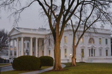 La resistencia dentro de la Administración Trump
