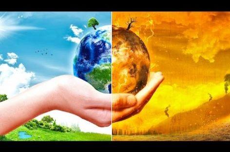 Buenas noticias para frenar el cambio climático