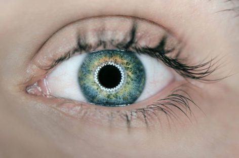 Una retina de grafeno para recuperar la visión en personas con ceguera