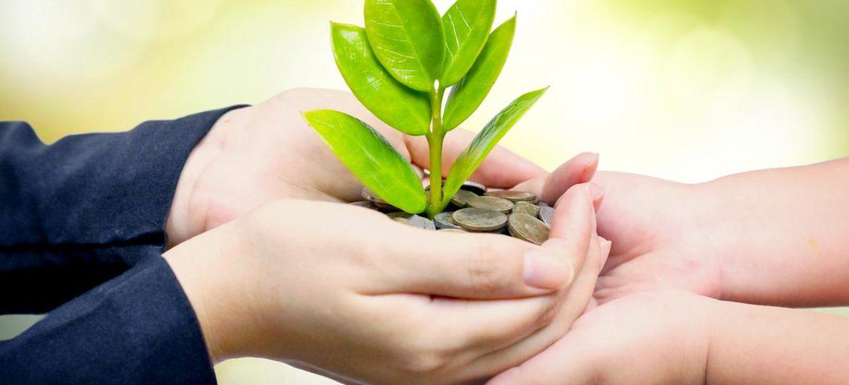 Donaciones, en lugar de criticarla, lo que debemos hacer es fomentarla y encauzarla