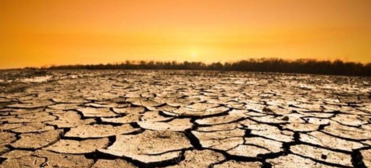 Los próximos 18 meses son críticos en la lucha contra el cambio climático