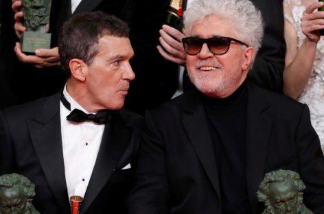 'Dolor y gloria' y 'Mientras dure la guerra'  triunfan en la gala del cine español