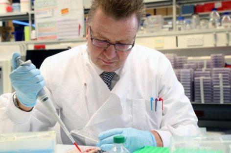 Inmunoterapia para tratar todos los tipos de cáncer