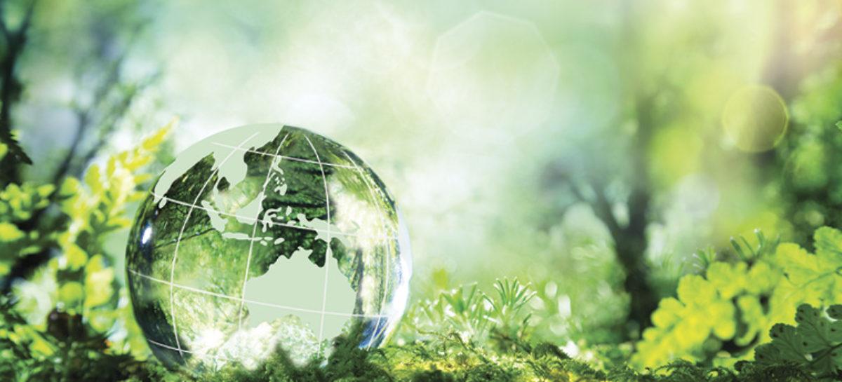 10 iniciativas para una vida sostenible en 2020