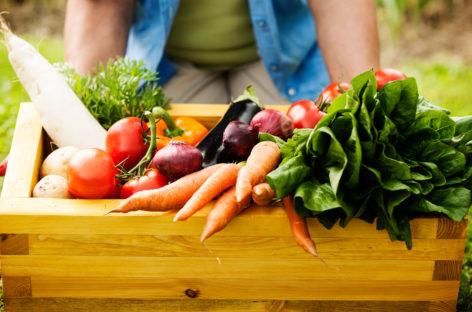 Comer bien y cuidar el planeta